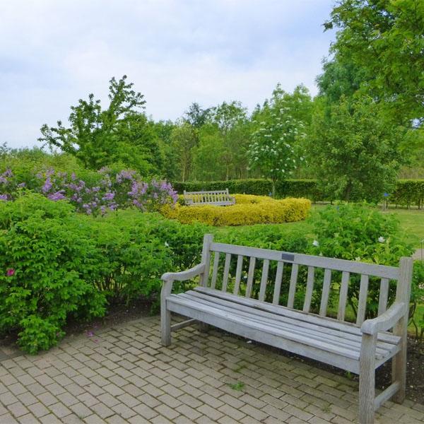 Wrens memorial garden bench